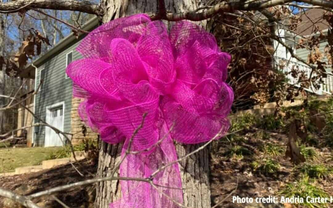 Hot Pink Ribbons Honor Loved Ones in Lockdown